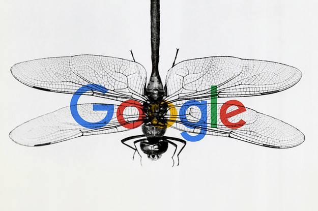 Dragonfly gây náo loạn nội bộ Google