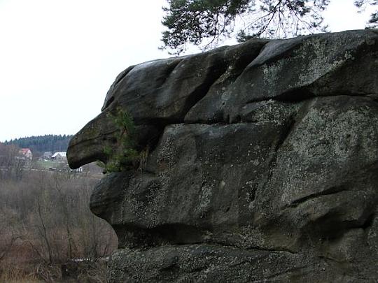 Czarownica z profilu (widok od strony drogi wojewódzkiej) [fot.KTG]