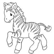 Cute Baby Zebras Coloring Pages Ideas