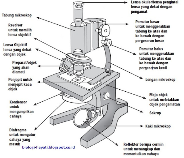 Bagian-bagian Mikroskop Cahaya