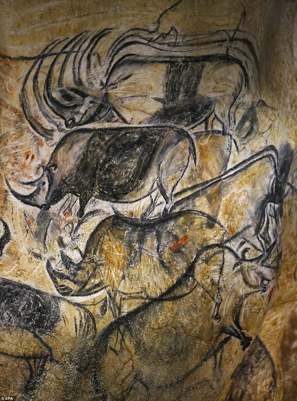 Shelter From The Storm Prehistoric Cave Art Exhibit In France