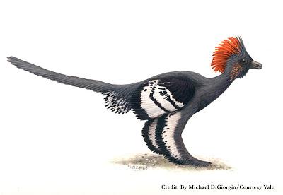как узнали цвет динозавров