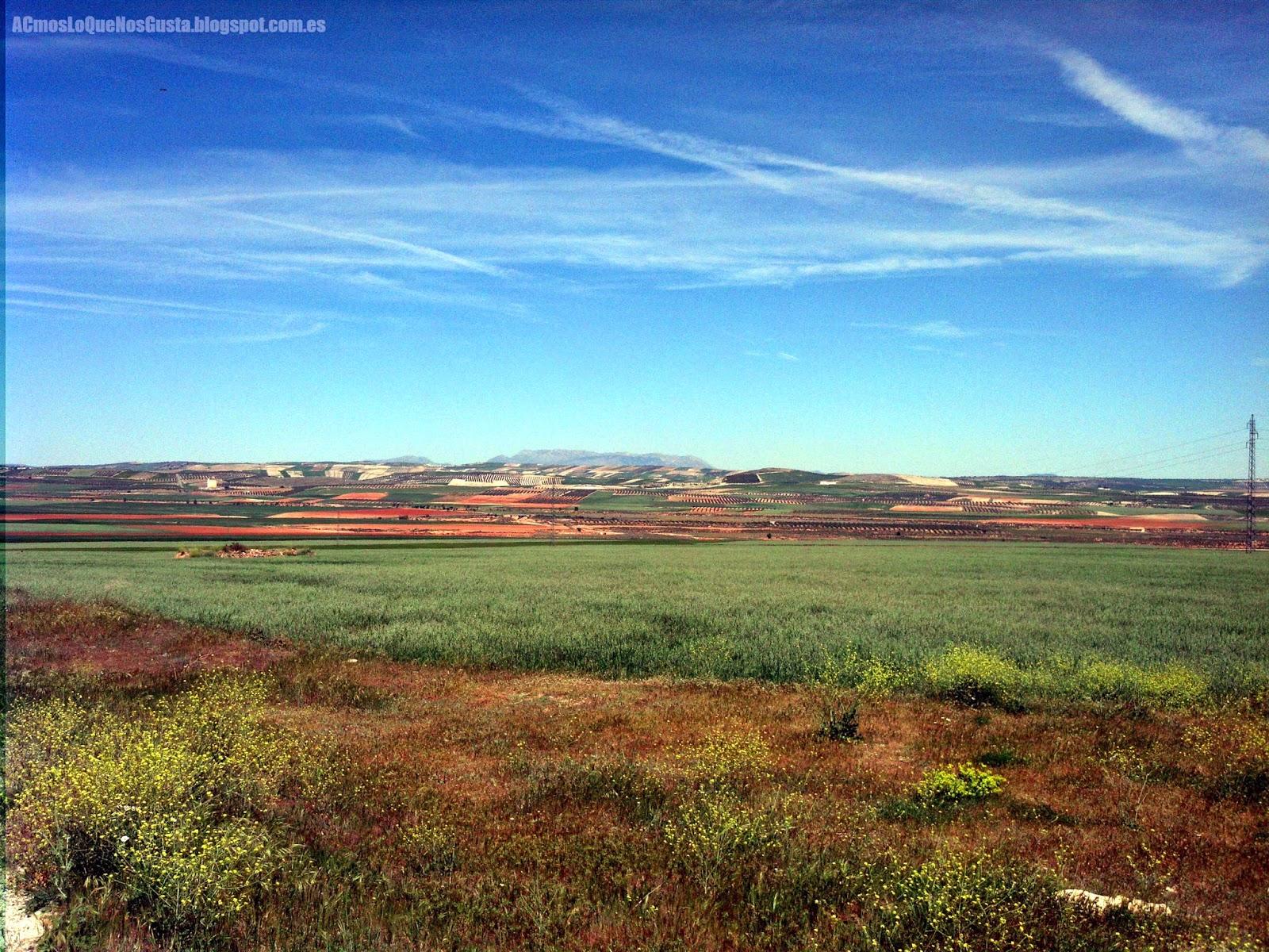 Primavera en la Hoya de Guadix. Foto desde la Venta el Puntal.