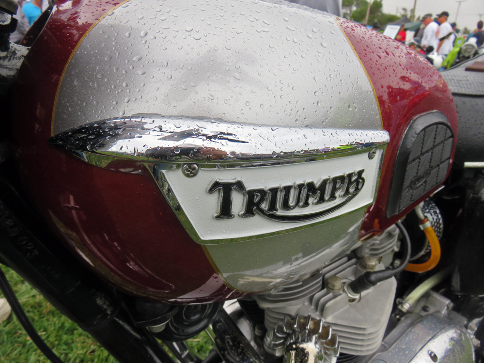 Motorcycle tank with rain drops.