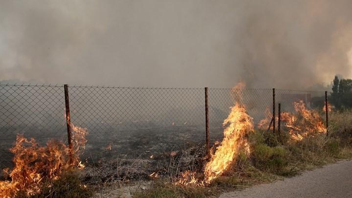 Ομολογία-σοκ από τον 35χρονο εμπρηστή: Ήθελα να βλέπω τους πυροσβέστες να τρέχουν να σβήσουν τις φωτιές