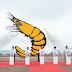 Bán sỉ Test Sera Bạc Liêu - Nuôi tôm công nghệ cao - 090.96.93.720