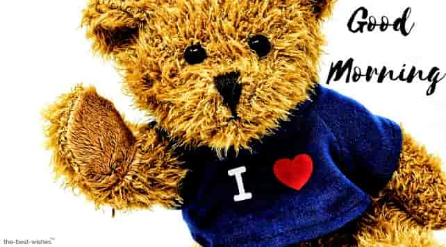 teddy images with love