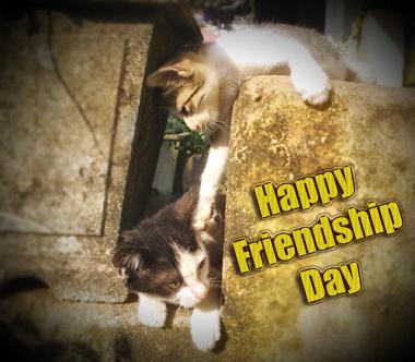 Happy-Friendship-day-5