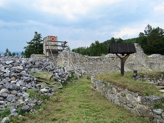 Ruiny klasztoru kartuzów.