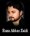 http://www.humaliwalayazadar.com/2016/09/raza-abbas-zaidi-soz-salam-marsia.html