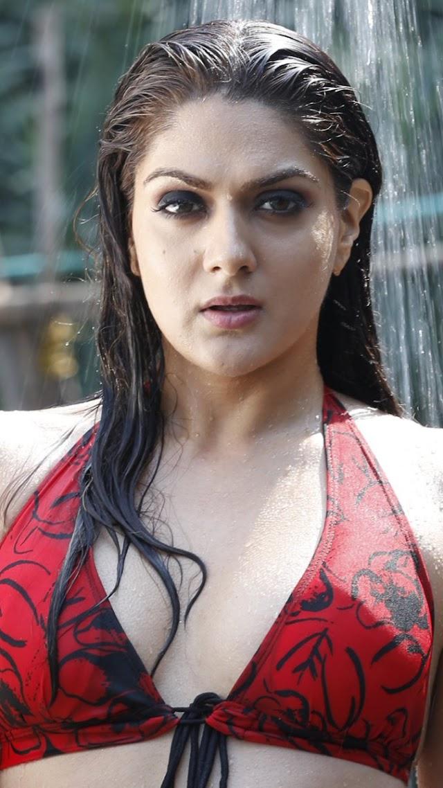 Sakshi Chaudhary Bikini Photo Shoot   Set 2