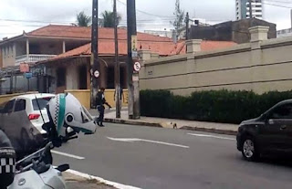 Guarda Municipal de Fortaleza (CE) interrompe trânsito para gatinha atravessar a rua com o filhote