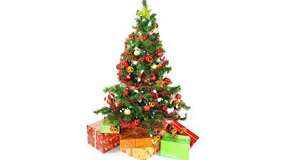 Opgetuigde kerstboom