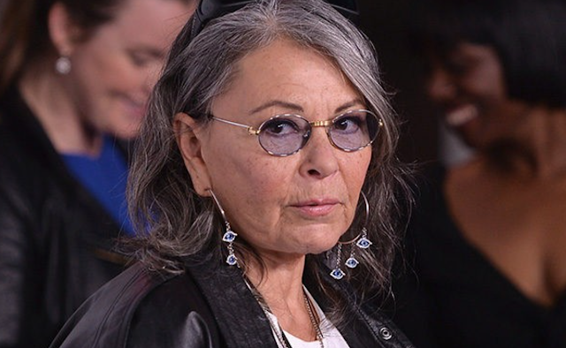 Roseanne Barr: I Was 'Blacklisted' by Those Supporting 'James Gunn's Pedophile Jokes'