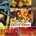 Importance of the healthy balanced food and better food for better life essay.