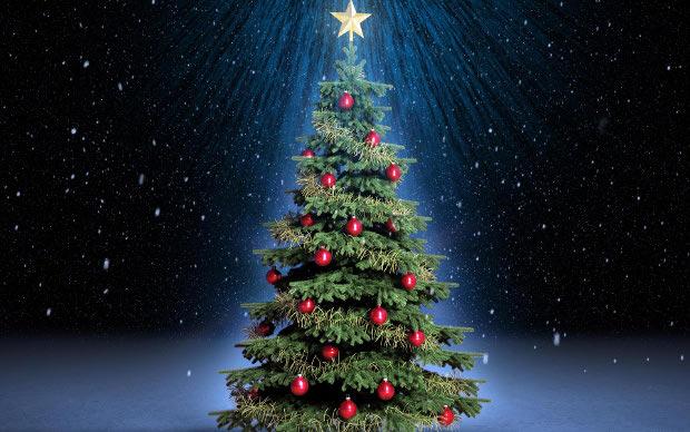 Immagini Di Natale Alberi.Albero Di Natale Le Origini Riccamente