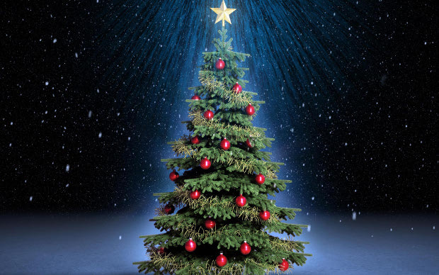 Foto Di Natale Albero.Albero Di Natale Le Origini Riccamente