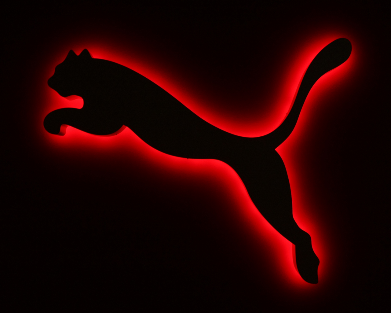 Beautiful HD Wallpapers: Puma HD Wallpaper
