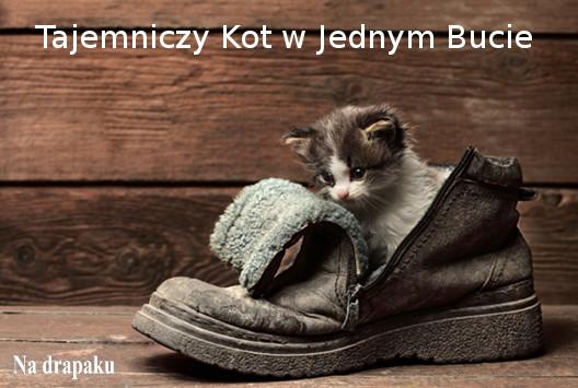 Tajemniczy Kot w Jednym Bucie