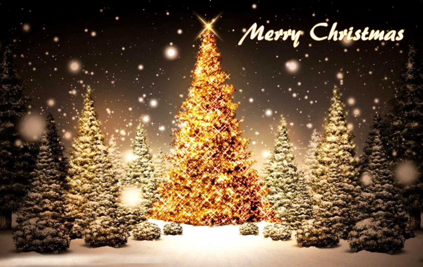 Beautiful Merry Christmas Tree Cute Christmas Wallpapers