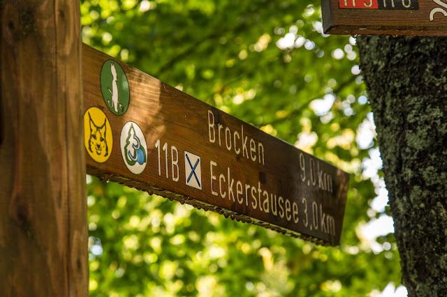 Bad Harzburger Teufelsstieg  Wanderung-Harz  Wandern – Von Bad-Harzburg auf den Brocken  Wandern-im-Harz  Abstieg Goetheweg zum Torfhaus 04
