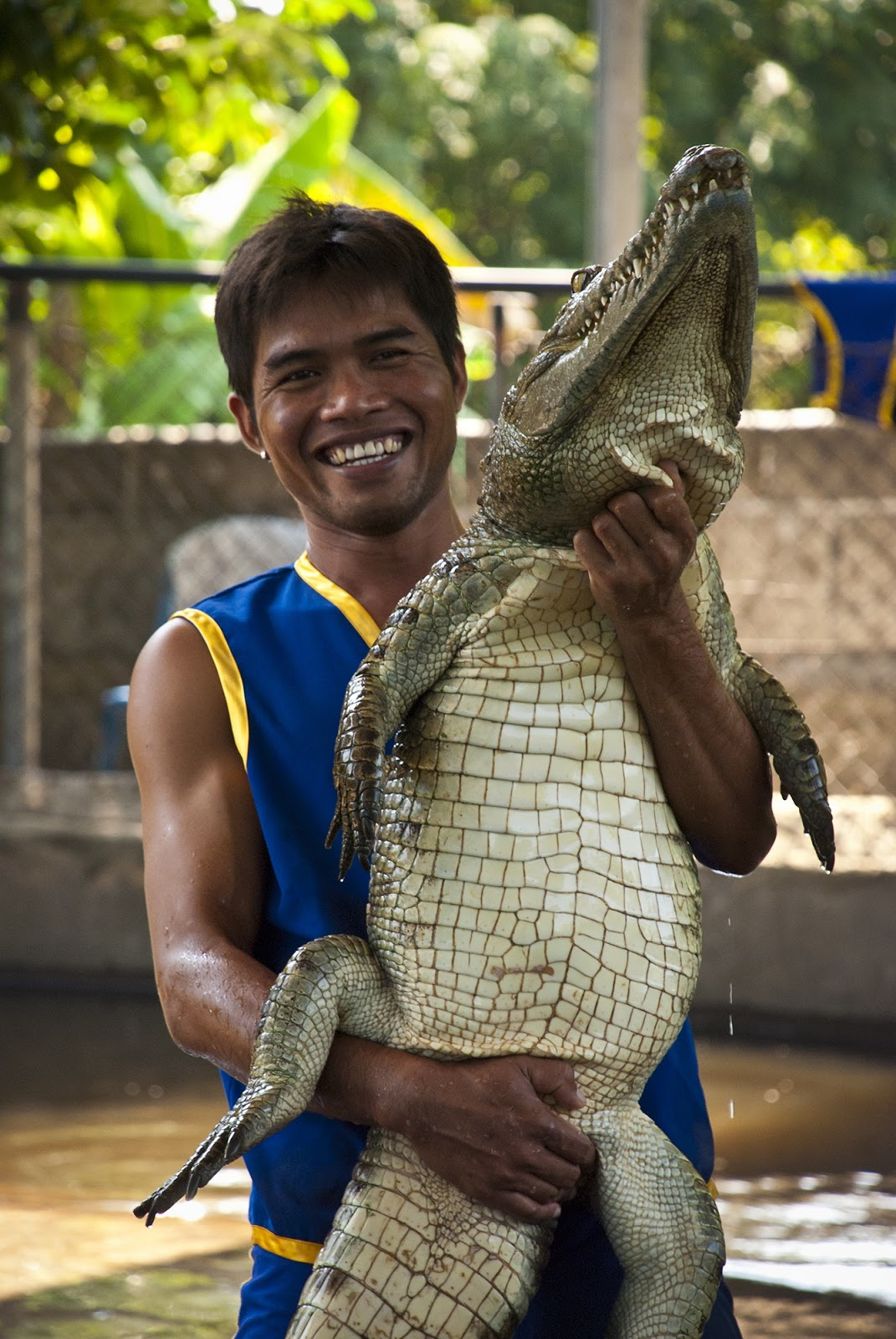 A man touching a crocodile skin.