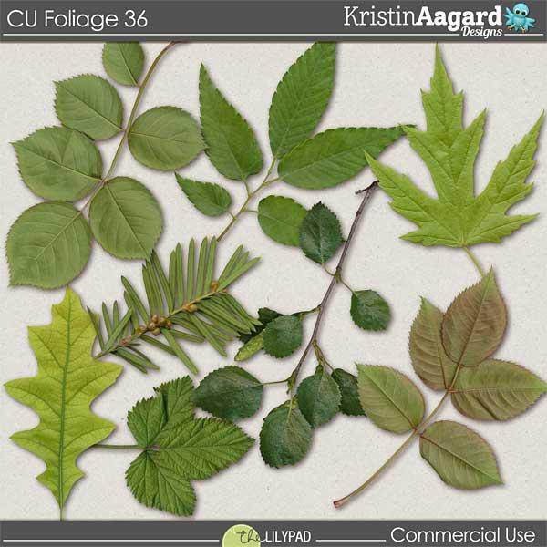 http://the-lilypad.com/store/digital-scrapbooking-cu-foliage-36.html