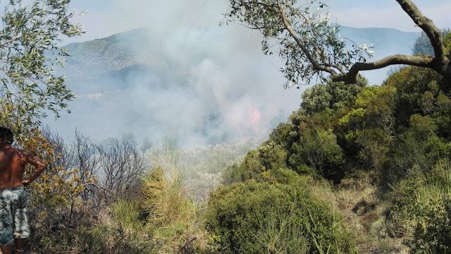 Υπό έλεγχο η φωτιά στο Βουργαρέλι, νέα πυρκαγιά στη Φλωριάδα - ΦΩΤΟ