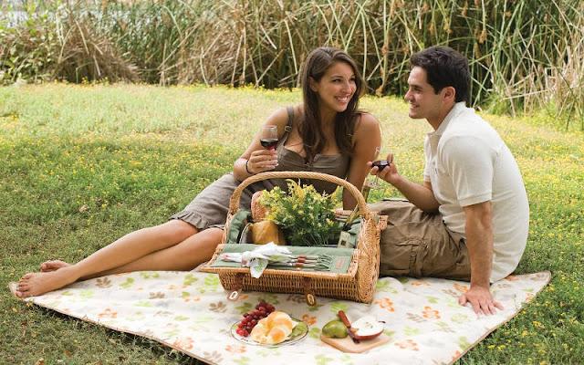 Piknik via partypicnic.com