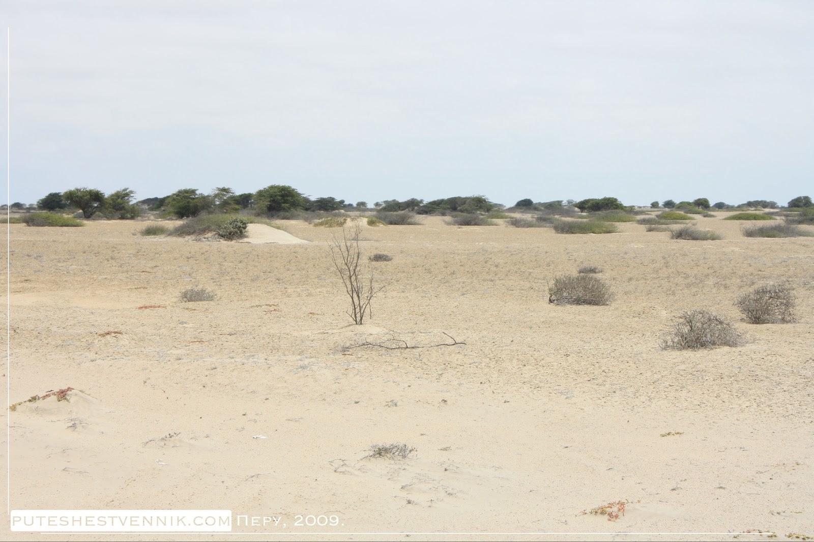 Пустыня в Перу