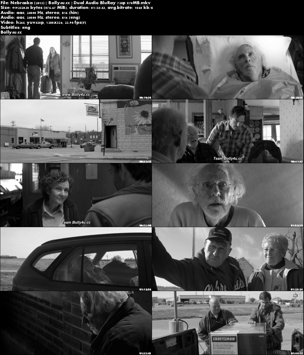 Nebraska 2013 BluRay 850MB Hindi Dual Audio 720p ESub Download