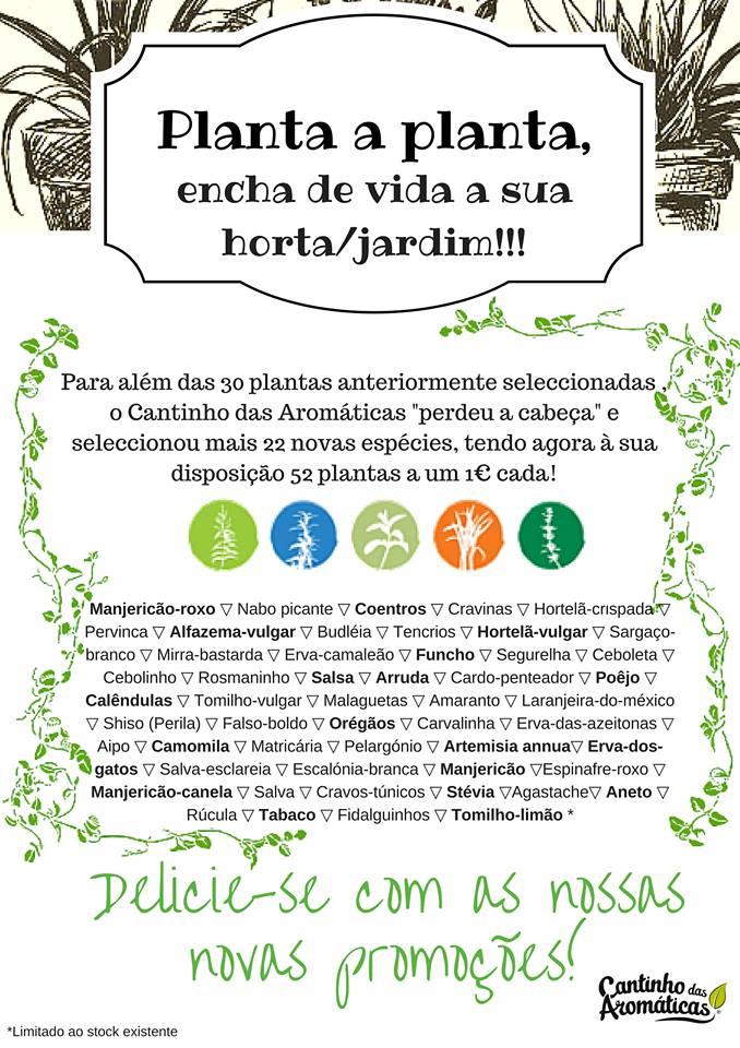 http://www.cantinhodasaromaticas.pt/lo…/plantas-em-vaso-bio/