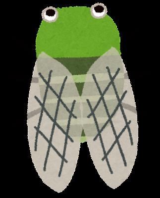 ミンミンゼミのイラスト(蝉)