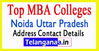 Top MBA Colleges in Noida Uttar Pradesh