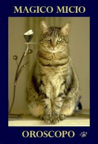 oroscopo-online-gatti