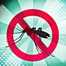 Anti Mosquito App For Iphone