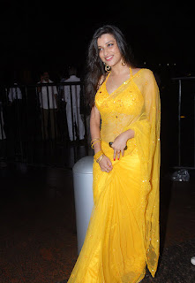 YELLOW COLOUR SAREE BLOUSE