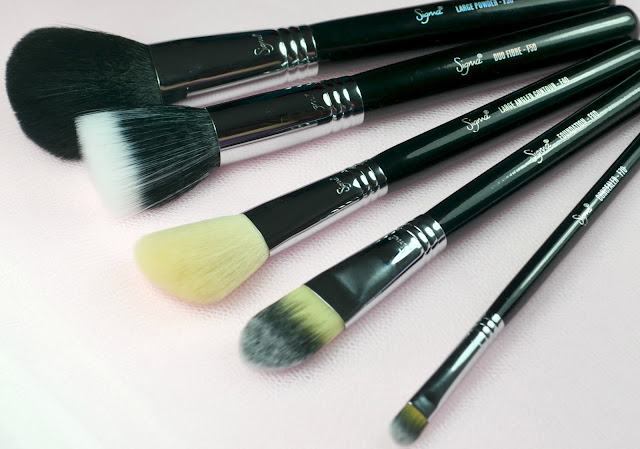 Five of the Sigma Essential 12 Piece Brush Kit spread out