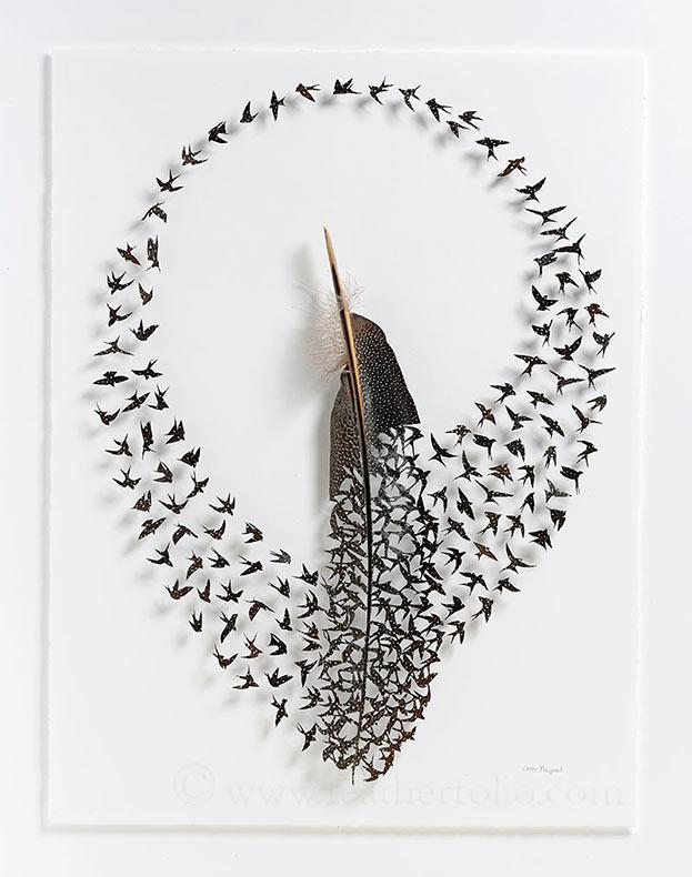 Exquisitas ilustraciones pluma cortadas de Shadowbox de Chris Maynard