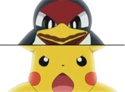 Taillow vs Pikachu