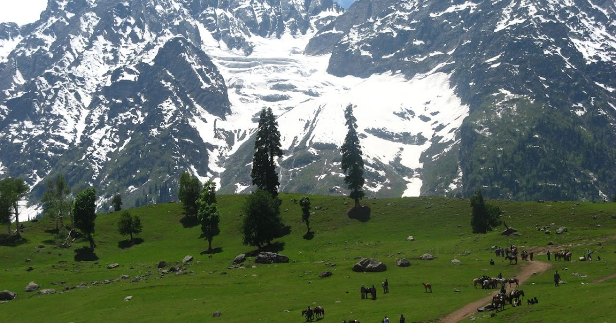 Book Kashmir Tours and Holiday Packages