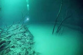 небольшой обзор интересных фактов о Мировом океане