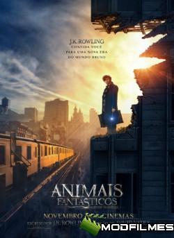 Capa do Filme Animais Fantásticos e Onde Habitam