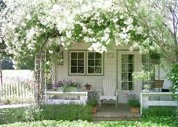 Foto rumah dengan hiasan bunga mawar