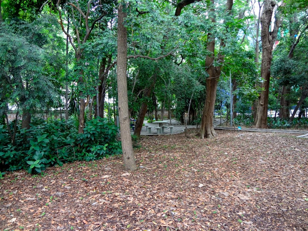 DSC00111 - Série Avenida Paulista: a Villa Fortunata e o parque. Como é o nome mesmo?