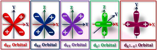 Quantum Number and Atomic Orbitals