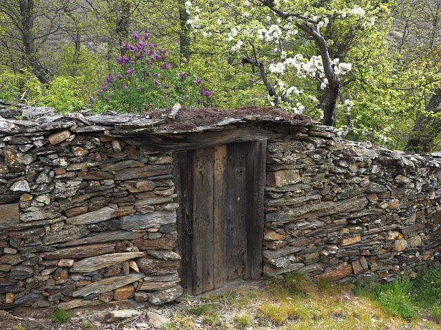 Muro de piedra en la Maragatería