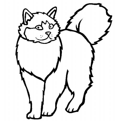 Gambar Mewarnai Kucing Terbaru