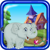 Games4Escape Calf Elephan…