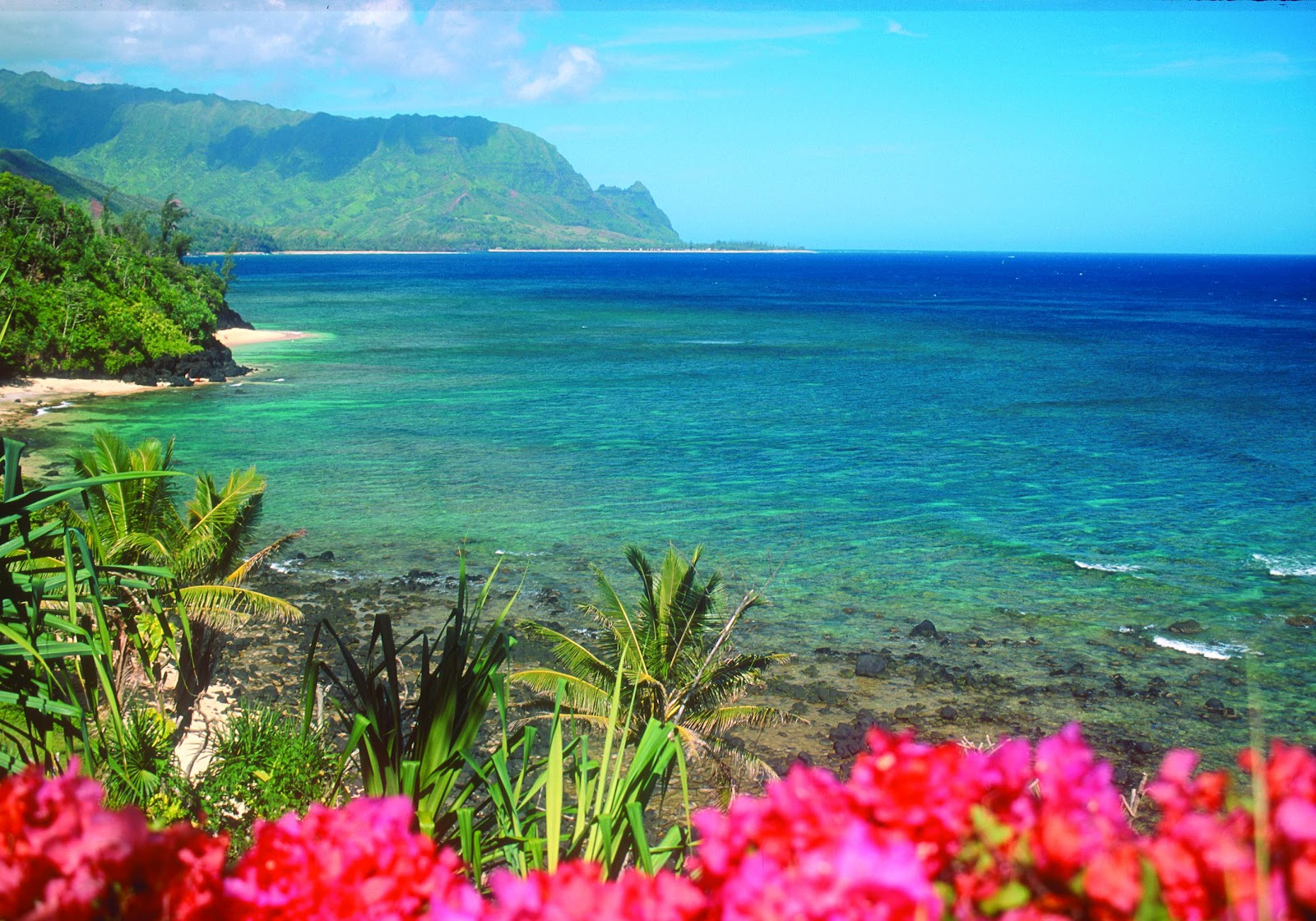 Anywho...: Go Hawaii